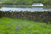 Old wall and house - Canna Small Islands Hebrides Scotland