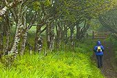 Walking under the trees - Canna Small Islands Hebrides