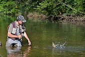 Fly fishing an European Grayling - River Dessoubre France