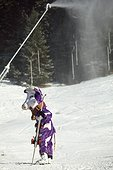 'Milka cow' in a winter sports resort - France