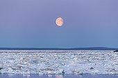 Full Moon and Melting Sea Ice - Hudson Bay Canada
