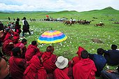 Monks watching the races during Lapste - Tibet China  ; Equestrian Festival Lapste <br>Every year, in june, the villages of a each valley are gathering together for horse races. Monks watching the races.