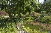 Jardin de Valérianes ; Hosta, hakonechloea, Pontederia, Salix babylonica.