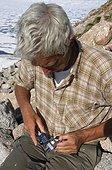 Measuring a Little Auk - Greenland