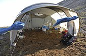 Surgical tent to anesthetize and operate auks - Greenland ; installation and removal of intra-abdominal recorders