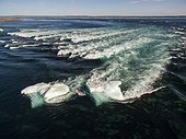 Aerial view of iceberg grounded in shallow rapids during tidal rip in Wager Bay on summer morning, Ukkusiksalik National Park, Nunavut Territory, Canada