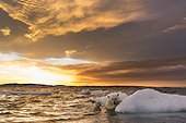 Polar Bear and young cub (Ursus maritimus) cling to melting sea ice at sunset near Harbour Islands, Repulse Bay, Nunavut Territory, Canada