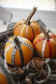 Decorated pumpkins,