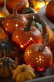 Halloween pumpkins,