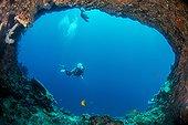 Coral reef, Cebu Island, Philippines