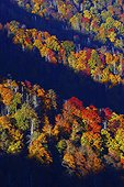 Autumn scene from Chimney Tops peak, Pigeon River Valley, Great Smoky Mountains National Park, Tennessee, USA