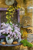 Table with flowers in spring, lilac, banks rose trees, euphorbia, Provence, France