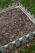 Square foot gardening and plane tree mulch, Provence, France