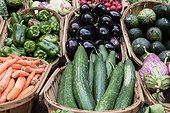 Vegetable baskets with, carrots, cucumbers , cabbage, radishes , eggplant