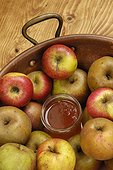 Apples and apple jelly jar in a preserving pan , apple (Malus communis) , France