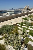 Garden Migration , Fort St. John, Villa Mediterranean MuCEM Museum of Civilization of Europe and the Mediterranean , the Major Cathedral in the background, Marseille, Provence, France