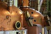 Stills, distillery G. Miclo , Lapoutroie , Alsace, France