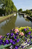 Downstream of the boats of locks of the seventeenth century the Canal de Briare, Rogny -les-Sept -Ecluses , Yonne, France