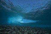 Vague déferlante sur le récif à l'entrée de la passe de Tiputa, atoll de Rangiroa, Polynésie française.