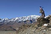 Man and prayer flag, Changthang Plateau, Ladakh, Himalayas, India