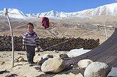Boy in an encampment, Surroundings of Korzok, Leh, Ladakh, Himalayas, India