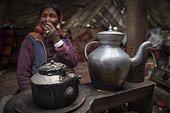 Woman and boiler inside a Yack wool tent, Surroundings of Korzok, Leh, Ladakh, Himalayas, India
