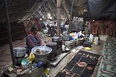 Woman inside a Yack wool tent, Surroundings of Korzok, Leh, Ladakh, Himalayas, India