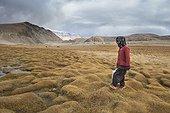 Young woman looking for water at the creek, Surroundings of Korzok, Leh, Ladakh, Himalayas, India
