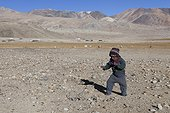 Boy playing, Surroundings of Korzok, Leh, Ladakh, Himalaya, India