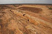 Mudanda rock or Rock of dried meat, Tsavo East National Park, Kenya