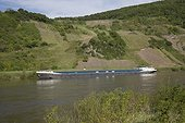 Long barge moored on Mosel River with vineyards in background Urtzig Germany