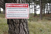 information panel on the proliferation of caterpillars of Pine processionary moth (Thaumetopoea pityocampa) on the site of the dune of Vieux-Bourg, Frehel, Brittany, France