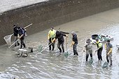 Electrofishing to collect the fish for draining the canal Saint-Martin in Paris 10th, France