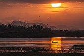 Traditional fisherman on lagoon at sunset, Arugam bay lagoon, Pottuvil, Sri Lanka