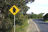 Signalisation routière : passage de manchot pygmée, Tasmanie, Australie