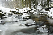 Thaw on the torrent, Geroldsauer, Black Forest, Germany