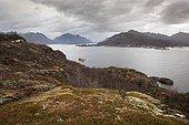 Fjord of Raftsundet seen from the island of Stormolla, Lofoten, Norway.