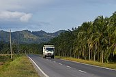 Landscape with oil palm cultivation and deforestation. Borneo. Malaysia.