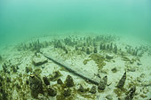 Remains of a Roman place of worship in Lake Bourget, Savoie, France
