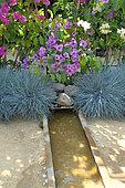 Water and Garden - Fescue, Surfinia, and Bougainvillea, Jardins de Chaumont sur Loire Festival 2015
