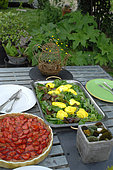 Tarte aux fraises, salades du jardin et oeuf mollet au safran, repas bio fait maison servi au jardin