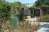 Presentation of wild plants in a rusty metal structure, Jardins de Chaumont sur Loire Festival 2015