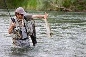 Fishing on the Rhin. Catching a common Barbel, Vieux Rhin, Haut-Rhin, Alsace, France