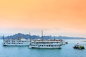Halong Bay, view from the site of the Surprise Cave (Hang Sung Sôt) and cruise ships for tourism on the bay, Vietnam
