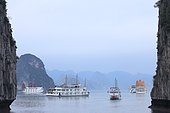 Halong Bay, a UNESCO World Heritage Site, tourist boats stopping overnight, Vietnam,