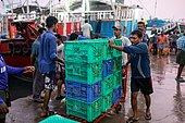 Fishing in Kerata. Unloading of goods at dawn in Munumbam port