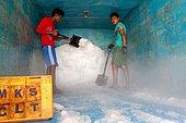 Fishing port in Calicut. Unloading ice from trucks.