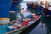 Fishing in Kerala. Unloading of cargos at dawn in the Munumbam port