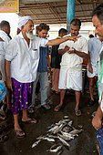 Fishing in Kerala. Selling fishes at the top of your voice in Cochin