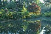 Leonardslee lakes & gardens, Rock garden, Sussex, England, UK